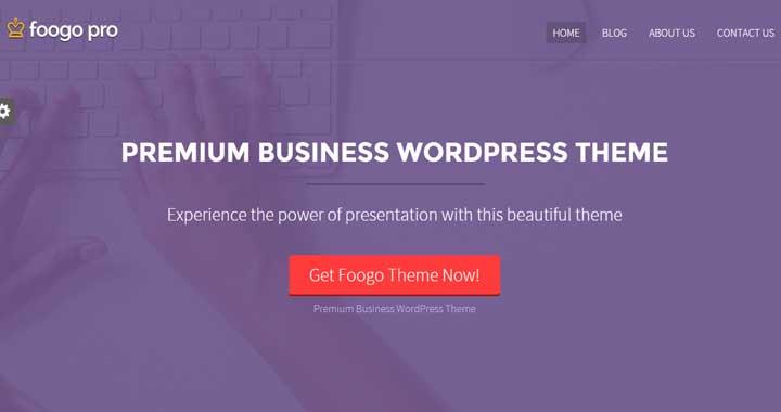 Foogo Pro WordPress Theme