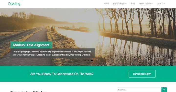 Dazzling WooCommerce WordPress Theme