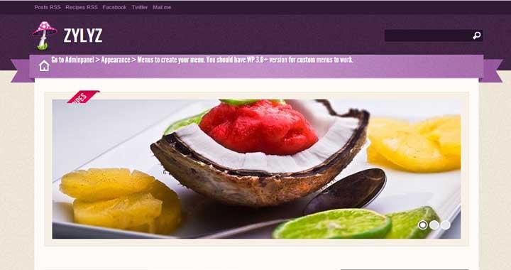 Zylyz Food Blog WordPress Themes