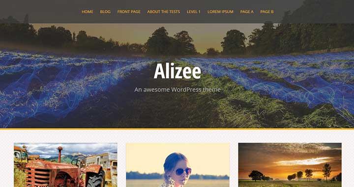 Alizee Masonry WordPress Theme