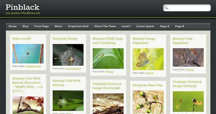 PinBlack Pinterest WordPress Theme
