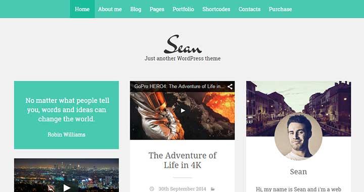 Sean Masonry WordPress Theme