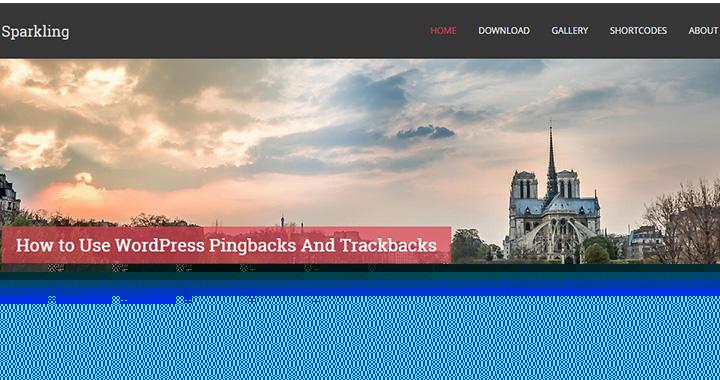 Sparkling WordPress Free Blog Themes