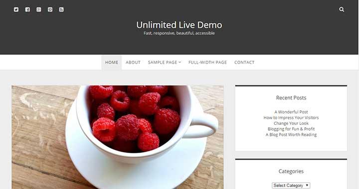 Unlimited Tumblr Style WordPress Theme