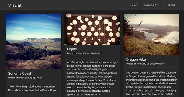 Visual Grid WordPress Theme