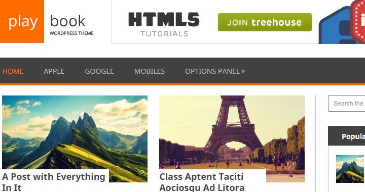 Playbook Best WordPress Blog Themes