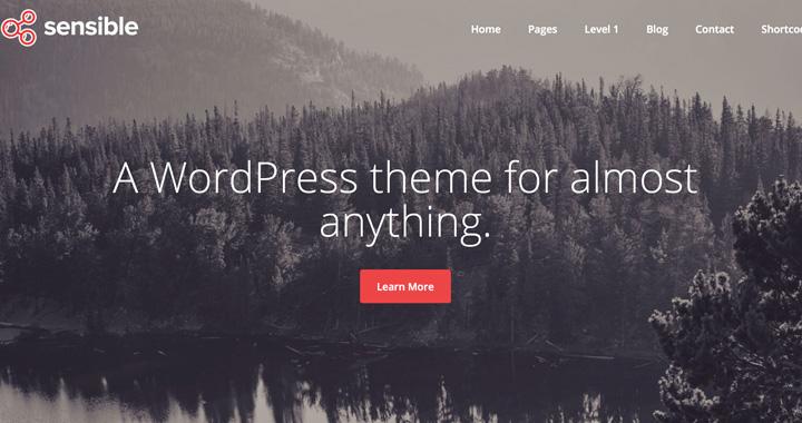 Sensible Free WordPress Blog Theme