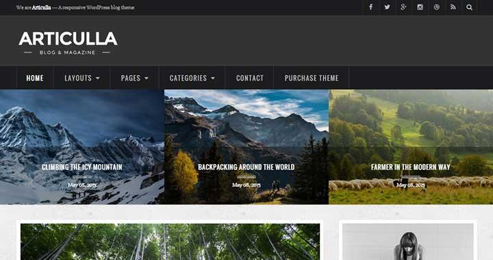 Articulla WordPress Themes Blog