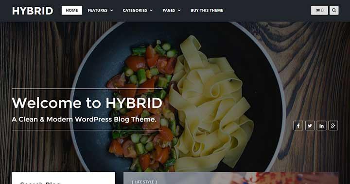 Hybrid WordPress Blog Theme