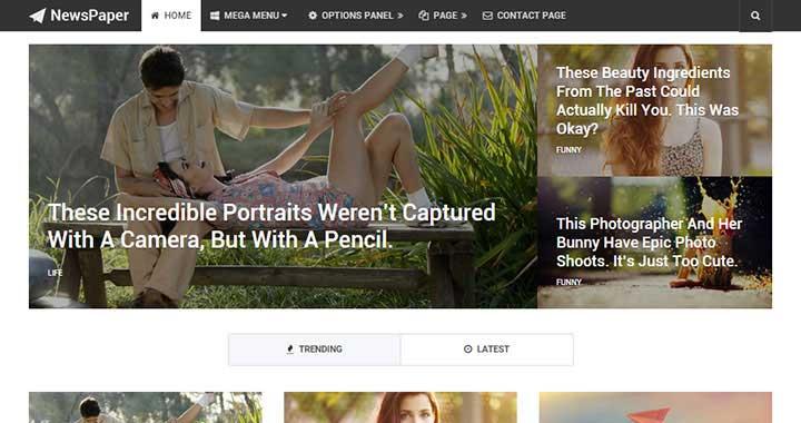 NewsPaper WordPress Magazine Themes 2015
