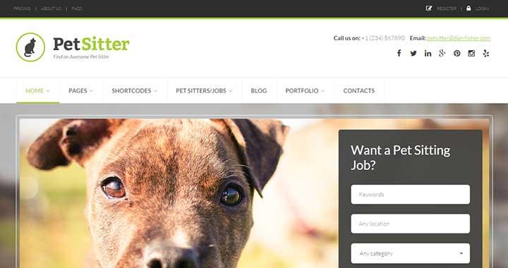 Pet Sitter Job