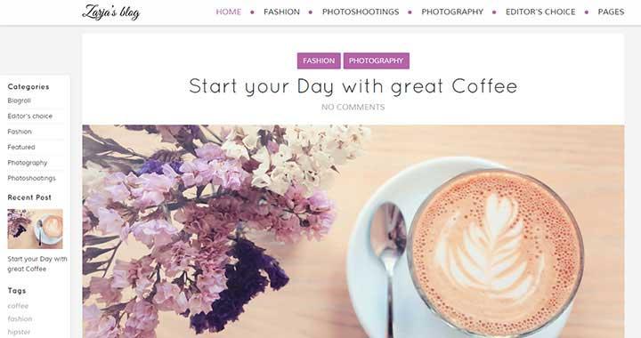 Zarja Premium WordPress Blog Themes