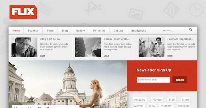 Flix WordPress Community Themes
