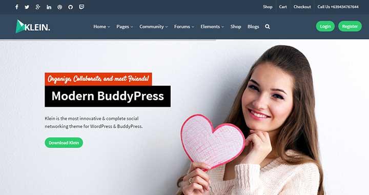 Klein WordPress Community Themes