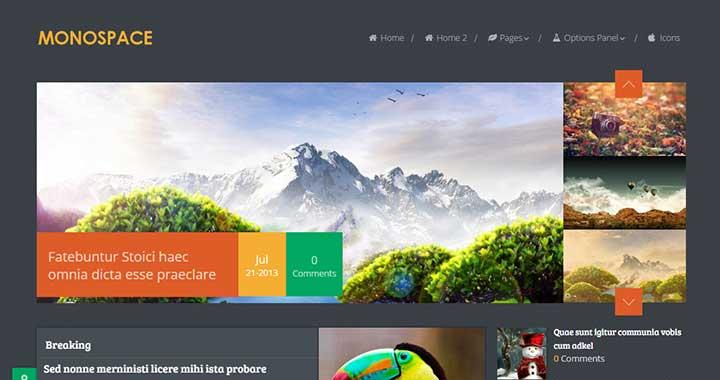Monospace Dark WordPress Themes 2015