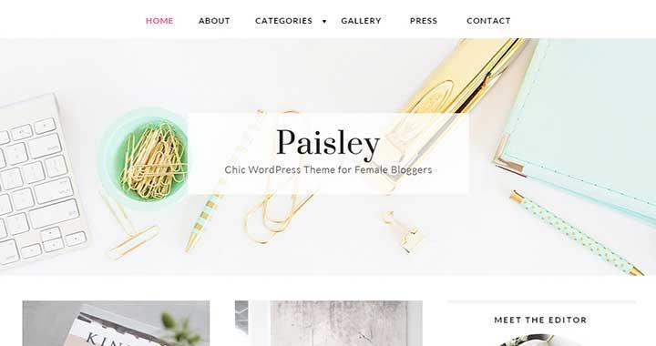 Paisley New WordPress Theme July 2015