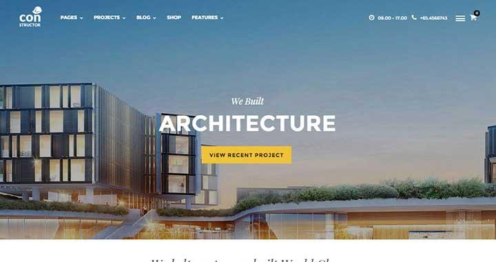 Constructor premium wordpress themes architecture