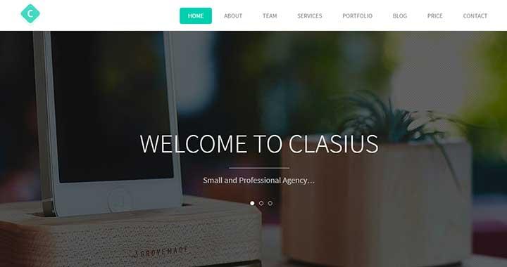 Clasius small business wordpress themes