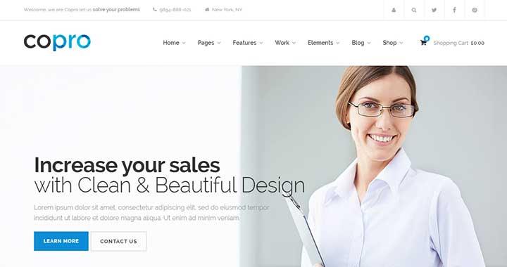 CoPro small business WordPress themes 2015