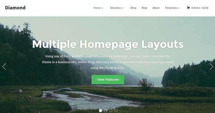 Diamond best small business WordPress themes