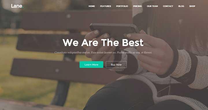 Lane small business WordPress theme