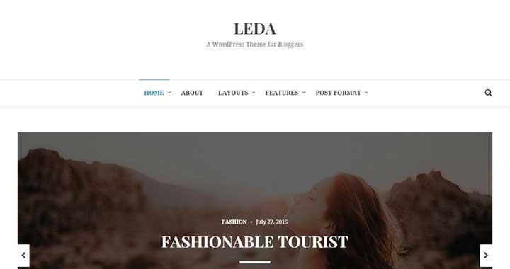 Leda simple wordpress themes responsive