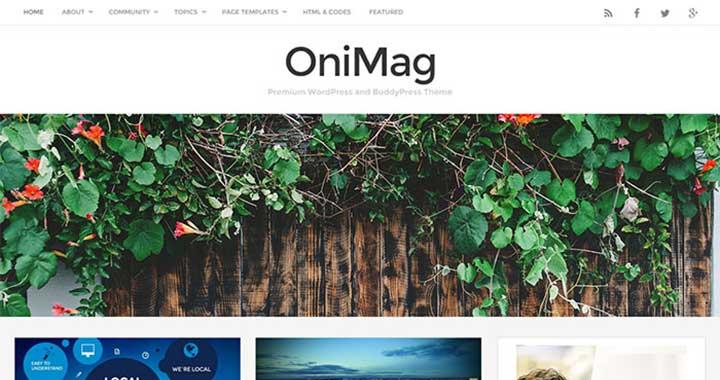 Onimag wp free themes