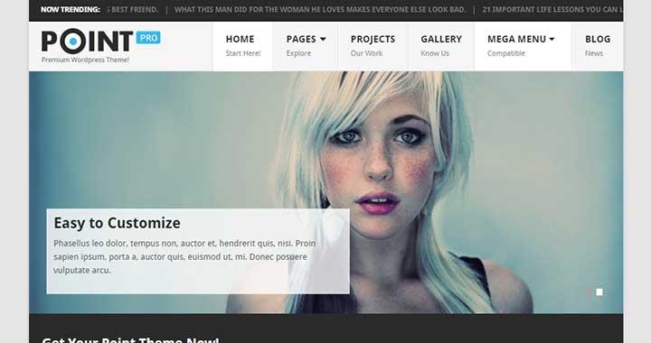 PointPro small business WordPress themes