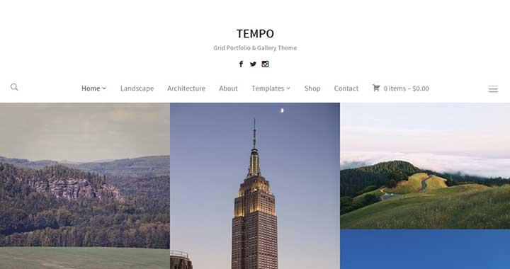 Tempo wordpress new themes