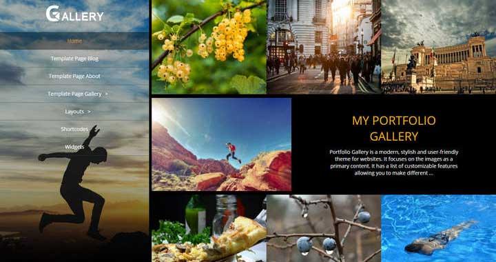 Portfolio gallery theme review